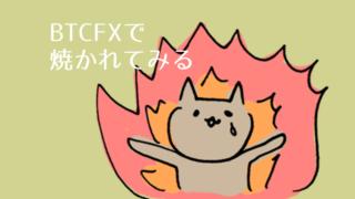 BTCFXで焼かれる