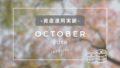 【資産運用実績】楽天証券がお得すぎる!2018年10月中間